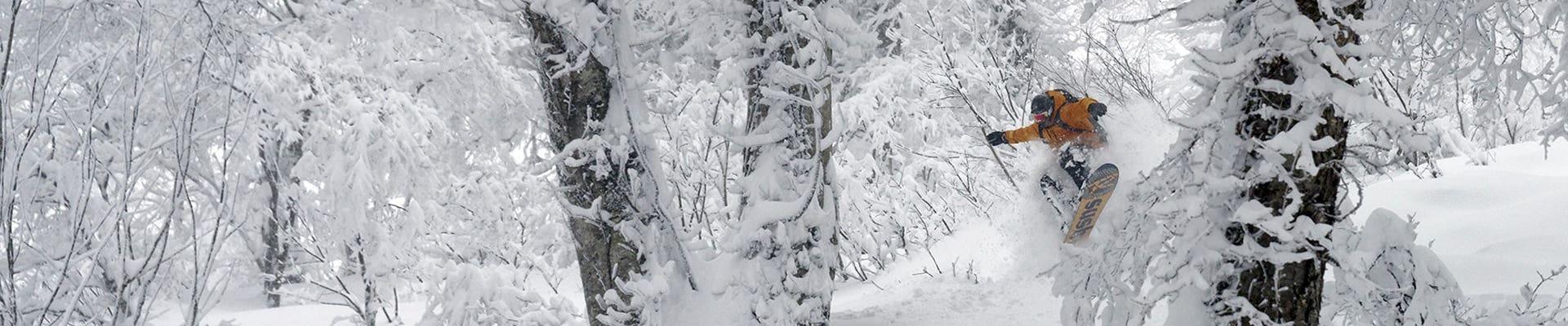 TEAM SNOWBOARD